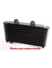 Oil Cooler Yamaha XJ9000 S diversion