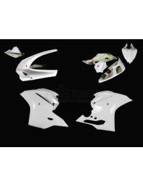 Fairings kit 4 parts Motoforza racing Ducati 1299 Panigale 2015 to 2018