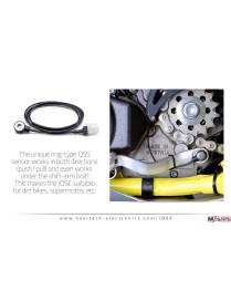 Quickshifter Healtech + harness iQSE-1+QSH-P4H