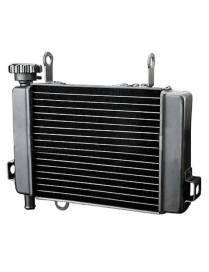 Water radiator for Honda CBR 125 since 2004