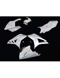 Fairings kit 5 parts Motoforza BMW S1000RR 2015/2016